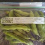 DRERS grown broadbeans